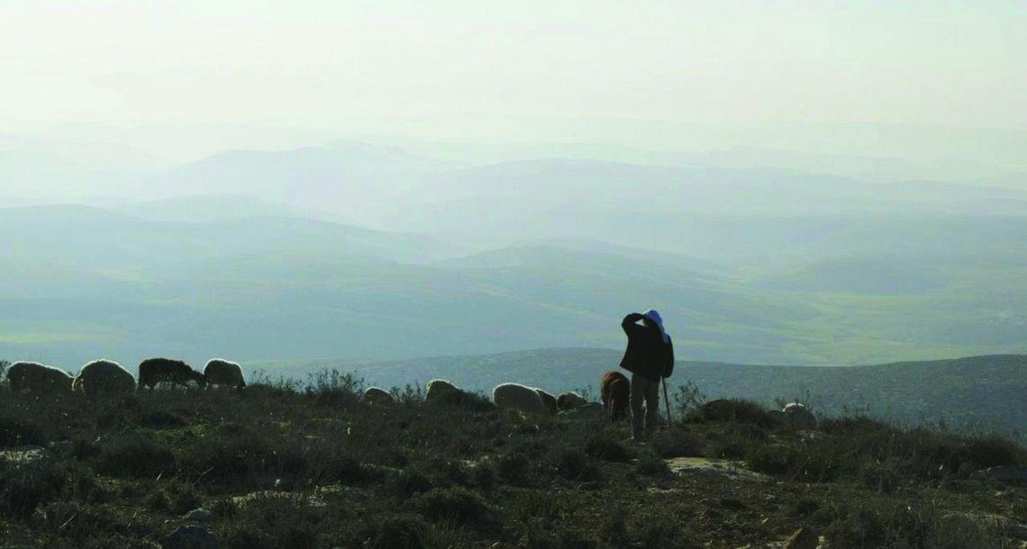 Image result for in the desert avner